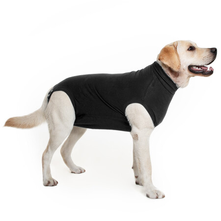 Suitical - Recovery Suit Hund